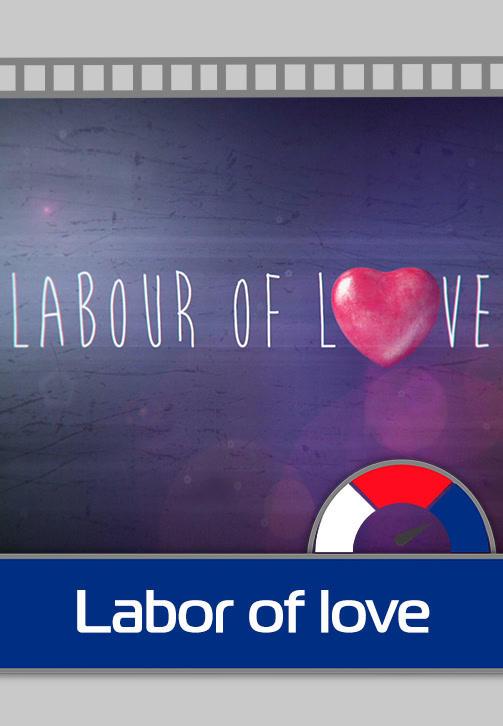 Постер к сериалу Labour of Love 2015