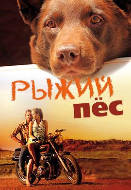 Постер к фильму Рыжий пёс 2011