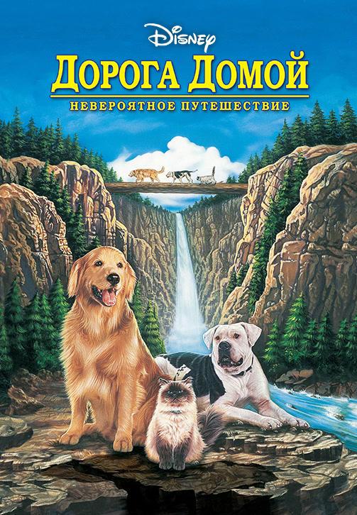 Постер к фильму Дорога домой: Невероятное путешествие 1993