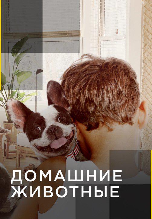 Постер к сериалу Домашние животные 2012