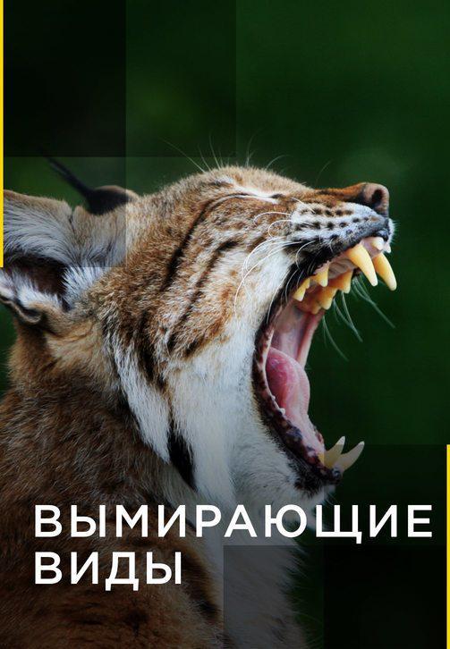 Постер к сериалу Вымирающие виды 2016