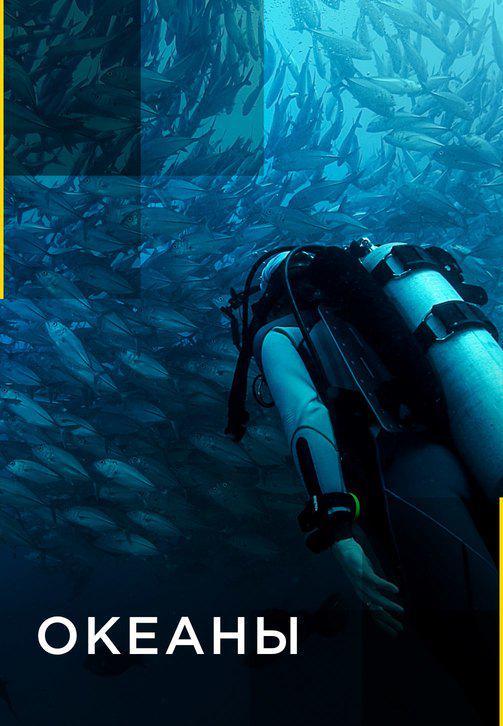 Постер к сериалу Океаны 2016