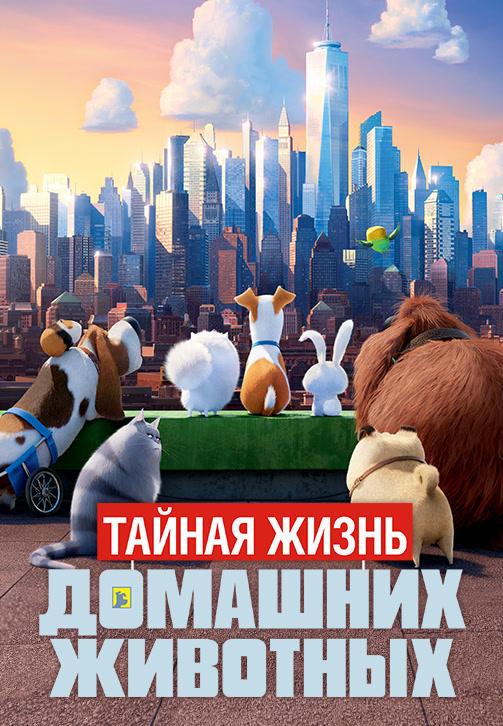 Постер к мультфильму Тайная жизнь домашних животных 2016
