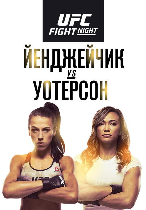 Постер к сериалу Йоанна Йенджейчик vs Мишель Уотерсон 2019