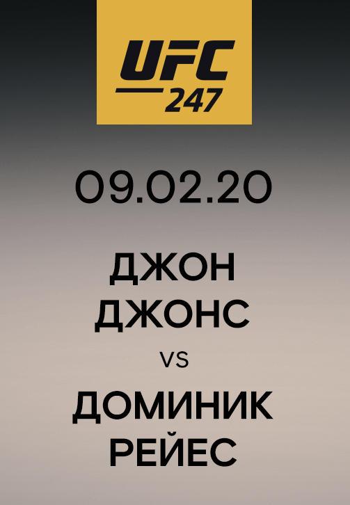 Постер к сериалу Джон Джонс vs Доминик Рейес 2020