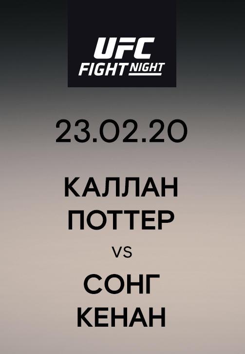 Постер к сериалу Каллан Поттер vs Сонг Кенан 2020