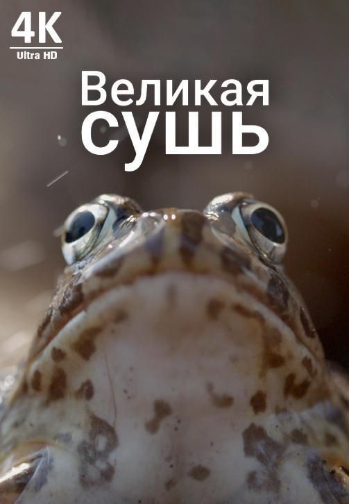 Постер к фильму Великая сушь 4K 2019