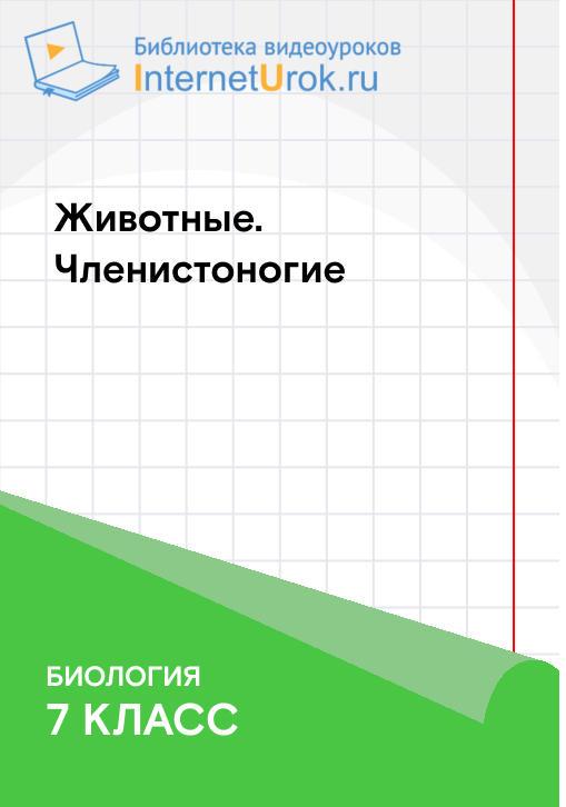 Постер к сериалу Тип Членистоногие 2020